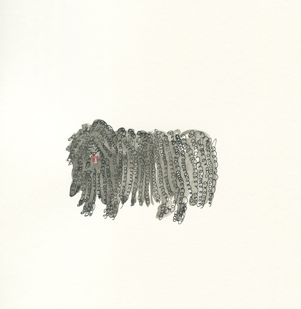hungarian sheepdog puli